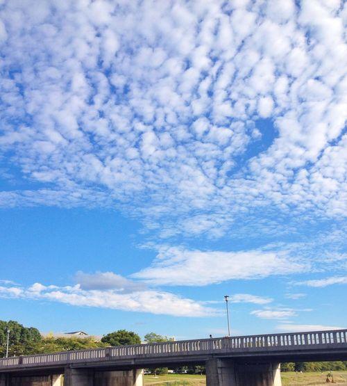 秋の空 Clouds And Sky もし今日も30℃超えなら、10月に2日連続30℃超えって50年ぶりやってんて!29.4℃で残念⁈ w