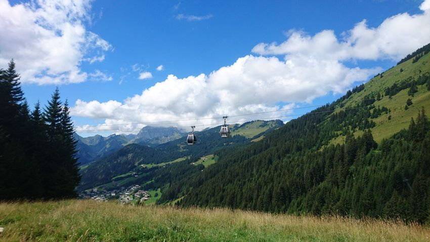Cable cars in the french alps near Châtel Lost In The Landscape Pinaceae Tree Mountain Pine Tree Cloud - Sky Nature Forest Day Scenics Mountain Range Beauty In Nature Outdoors Green Color Landscape Sky Vacations No People Travel Destinations Grass Ski Lift Alps