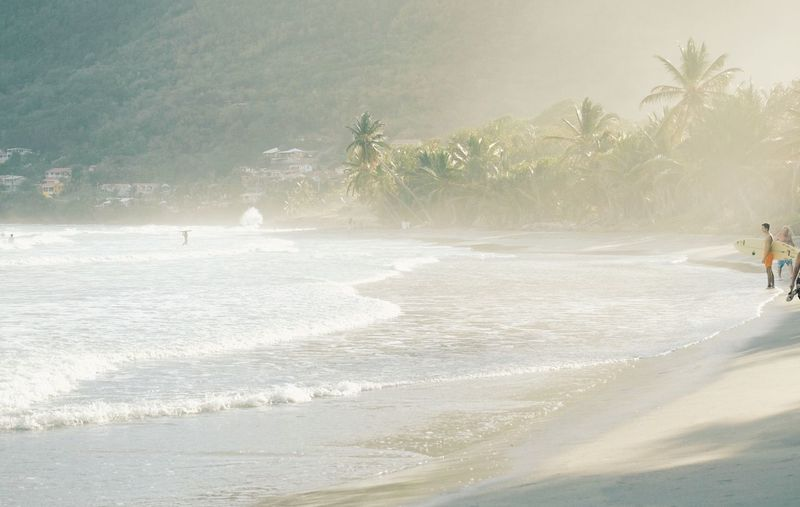 Location : Martinique, French West Indies. Time : 5:15 pm Adult Adults Only Beach Beauty In Nature Day Fog Foggy Morning Nature One Person Only Men Outdoors Palm Tree People Real People Salt Sand Scenics Sea Tranquility Tree Water Wave First Eyeem Photo EyeEmNewHere