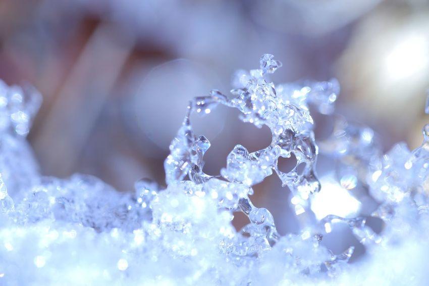 Snow Winter Ice Close-up Frozen Nature Macro Hokkaido Sapporo EOS 6D 過去フォト