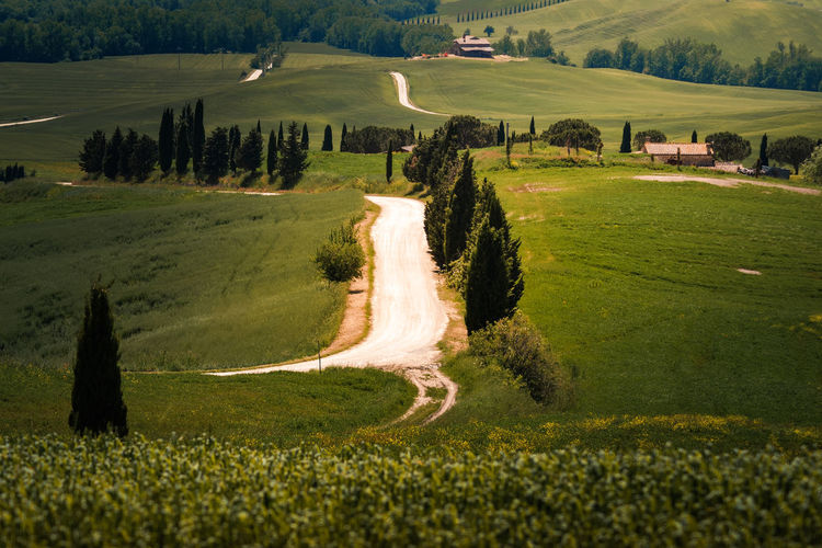 Tuscany road in