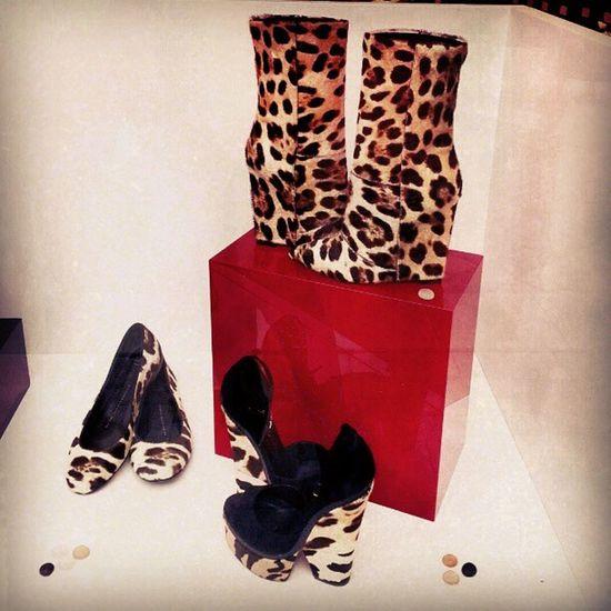 Fashion Shoes Animalier Style