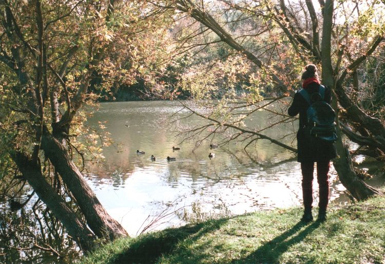 35mm 35mm Film Autumn Beauty In Nature Ducks Film Full Length Lake Mju2 Mjuii Nature Olympus Outdoors People Real People Rear View Reflection Sunny Tree Water
