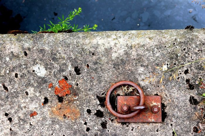 Ring Metal Ring Rusty Canal Towpath Sand Close-up