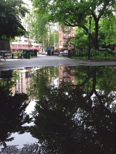 Puddlegram Water Reflections Puddle Park NYC