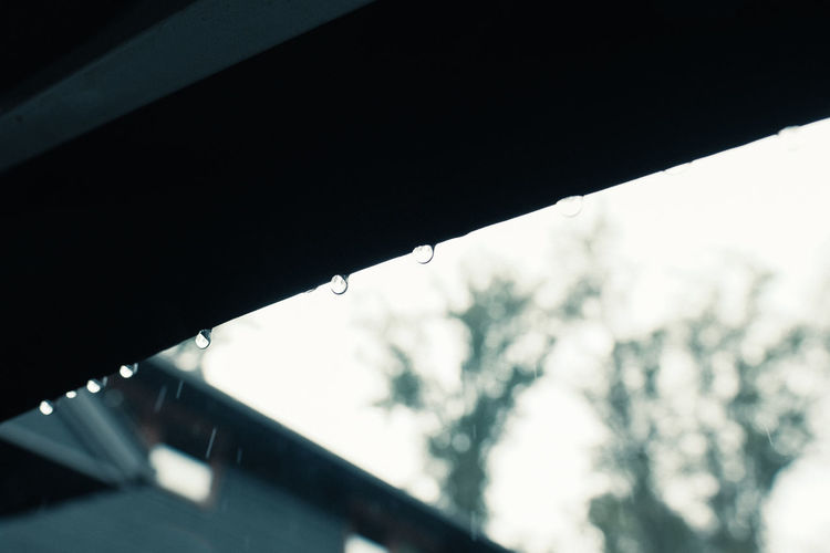 Low angle view of wet umbrella against sky
