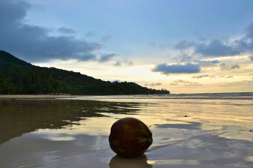 Alone Beach Beachphotography Coco Coconut Distant Horizon Over Water Moment Of Silence Moment Of Zen Moments Nature Sea Sky Solitude Tranquility Vacations Water Water Reflections Zen