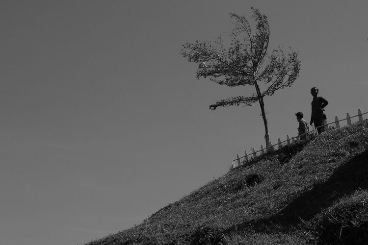 Low angle view of man standing on hill against clear sky