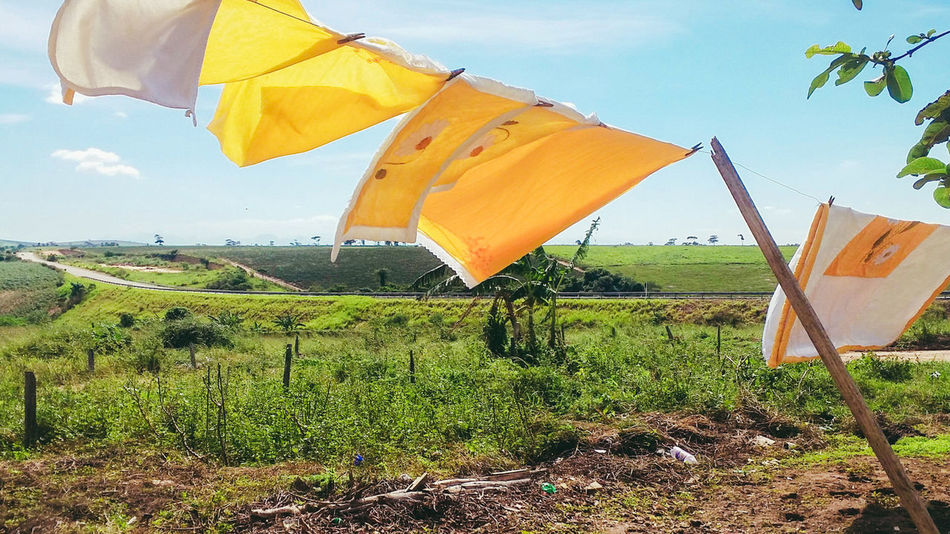 Yellow Sky Outdoors Day Drying No People Nature EyeEm Best Shots Seller And The Buyer Brazil Seller Sellphotos Selling Photos EyeEmBestPics Beauty In Nature Mountain Cloud - Sky Grass Selling EyeEm Nature Lover Clothes Drying Sell Nature Farm Live For The Story The Street Photographer - 2017 EyeEm Awards The Great Outdoors - 2017 EyeEm Awards The Architect - 2017 EyeEm Awards The Photojournalist - 2017 EyeEm Awards The Portraitist - 2017 EyeEm Awards Out Of The Box Place Of Heart EyeEmNewHere Let's Go. Together.