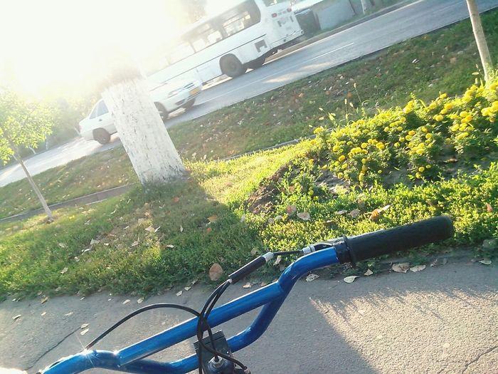 Казахстан алматы сейфуллина утро велосипед Trinx