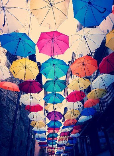 Colors Umbrella
