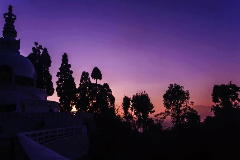 Peace Pagoda Silouette & Sky Sunset_collection EyeEm Best Shots EyeEm Nature Lover EyeEm Gallery Winter_collection Night Tree Sunset Silhouette No People Outdoors Architecture Nature Sky