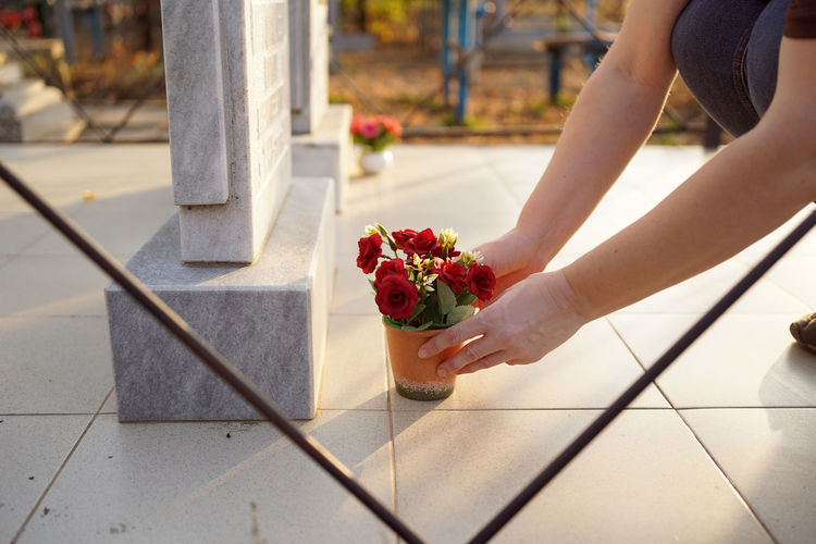 Midsection of woman holding red flower on floor