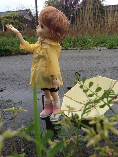 「雨 あがったかな?過去のお気に入り写真。」 Bjd Imdadoll
