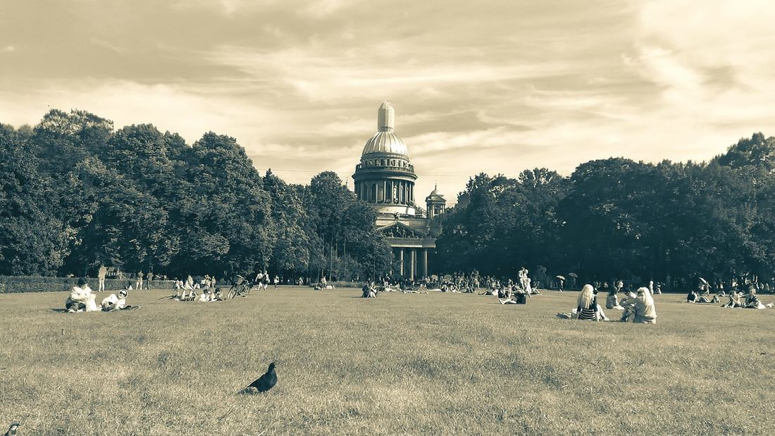 St. Petersburg 2016 Tree Cityscape Outdoors Day Nature City Sky People Sntpetersburg St Petersburg Monochrome The Wee BYOPaper! The Architect - 2017 EyeEm Awards Live For The Story