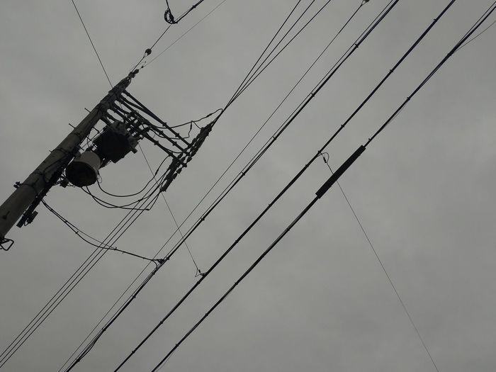 最近こんな天気が続いてた Bird Cable Spider Web Telephone Line Close-up Sky Animal Themes