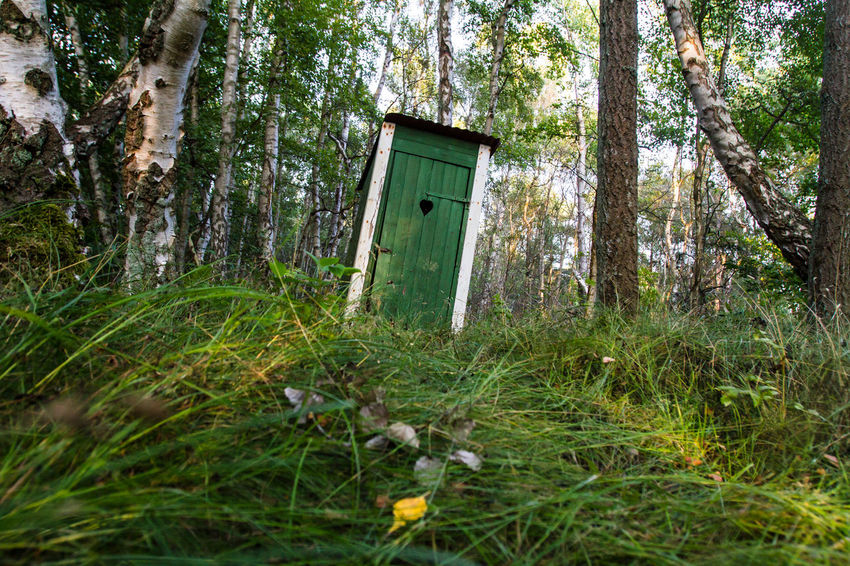 A green wooden earth closet between birch trees and pines in a typical Swedish forest. The dune landscape of Sandhammaren in Skane, Southern Sweden. Photo credit: Birke Oud. 18.08.2018 Dunes Good Weather Green Holiday Low Angle View Sweden Toilet Typical Absence Architecture Beauty In Nature Birch Birch Tree Day Door Dunescape Earth Closet Entrance Environment Forest Grass Green Color Land Nature No People Outdoors Pine Tree Plant Skåne Summer Sweden Nature Toilet House Tranquility Tree Tree Trunk Trunk Typical Houses Typical Landscape Wooden Closet WoodLand