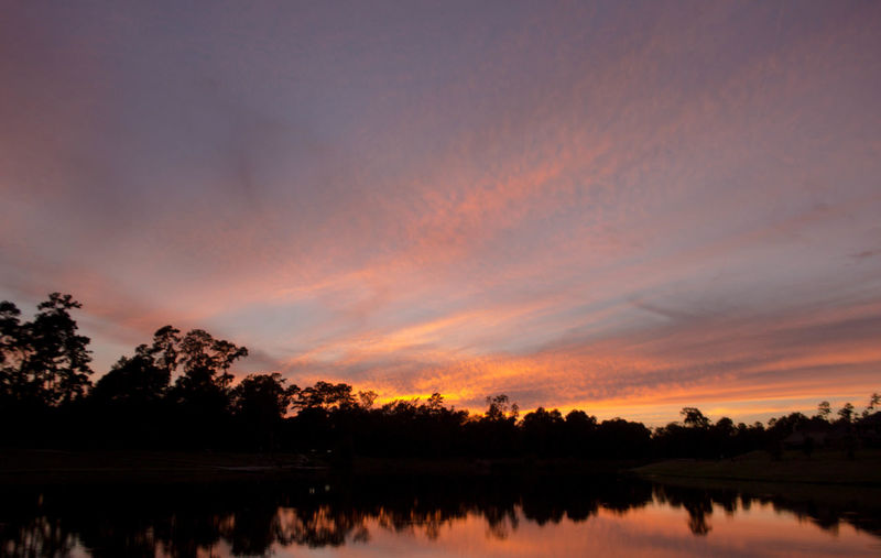 Reflection of silhouette trees in calm lake at sunset
