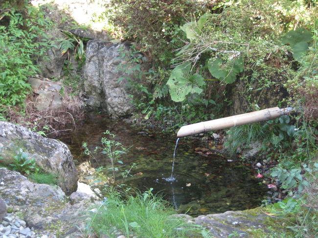 Countryside Iwate Japan Tohoku Tono Water 岩手 東北 遠野
