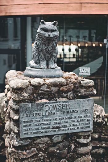 Towser the record breaking mouser Architecture Building Exterior Outdoors No People Close-up Perthshire Glenturret Distillery The Famous Grouse Whisky Crieff Scotland Towser Cat Cat Statue Statue Sculpture