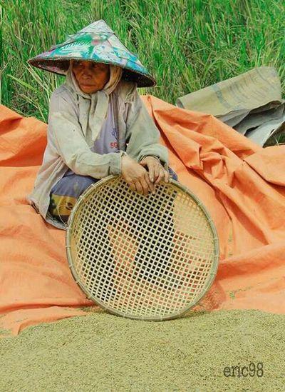 WomeninBusiness Eyeemphotography EyeEm Best Edits First Eyeem Photo natural Indonesian Street (Mobile) Photographie Naturalface
