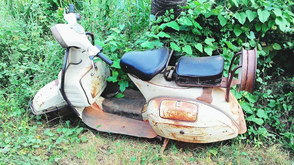 Countryside Vintage Greenary Abundant Scooter Old Different Rusty Awsome