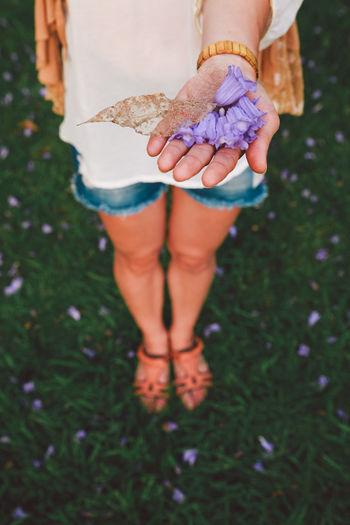 Blue Jeans White Shirt Feet Flowers Girl Grass Hand Petals Purple Flower Right Hand Sandals View From Above The Essence Of Summer 43 Golden Moments Exploring Style Fashion Stories Summer Exploratorium