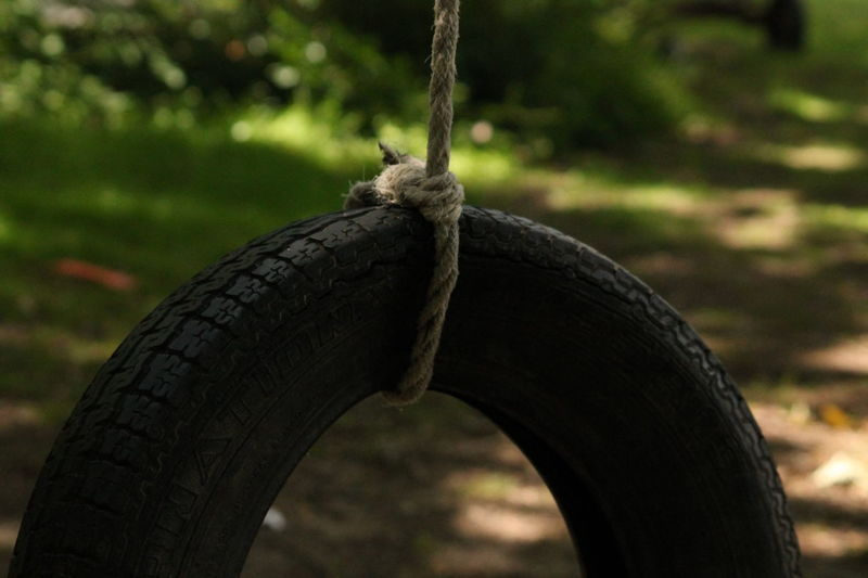 Beauty In Nature Black Color Close-up Day Focus On Foreground Nature No People Outdoors Rope Selective Focus Tree Tree Trunk Tyre Swing Wildlife Wood - Material