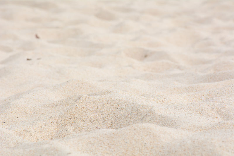 Backgrounds Beach Beach Sand Close-up Day Flat Full Frame Nature No People Outdoors Park Pattern Salt - Mineral Sand Sand Beack Sand Park Sand Patterns Sand Texture Textured