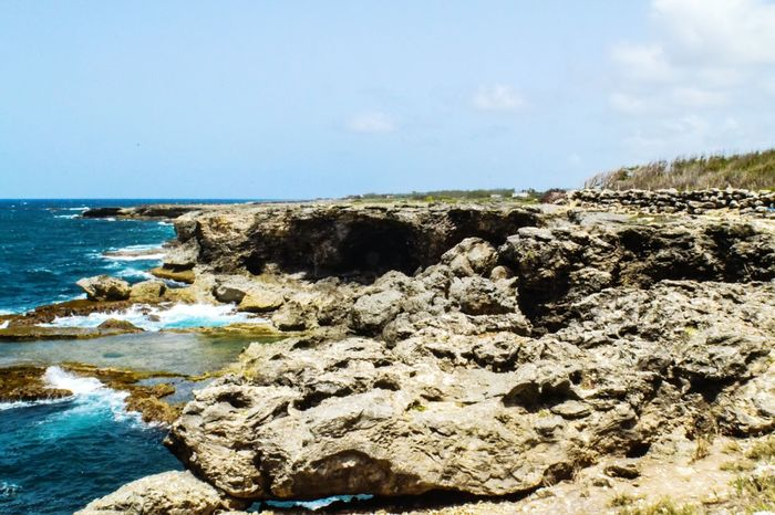 Sea Scenics Nature Beach Day Outdoors Horizon Over Water Sky No People Water Beauty In Nature Barbados Power In Nature Landscape Beauty In Nature Tranquil Scene Agriculture Aquarium Flower Architecture Tranquility Close-up Indoors  Low Angle View Paradise The Great Outdoors - 2017 EyeEm Awards