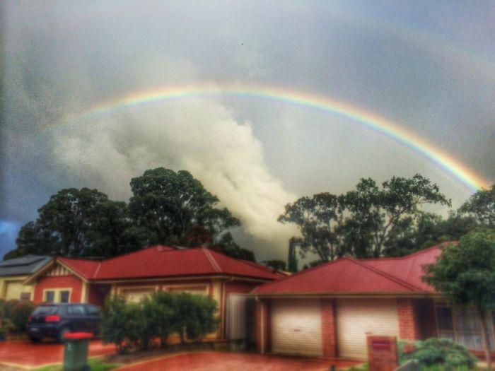 The Environmentalist – 2014 EyeEm Awards Rainbow Weather