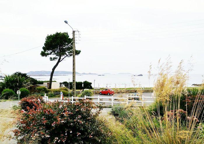 The View From My Doorstep Sea ıslands Beach Bathers Rocks Lamppost Surf Fence Tree Plant Sky