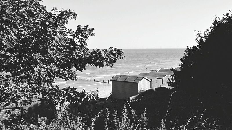 Sea View View Of The Sea Seafront Seaside British Seaside Day At The Beach Beach Beach Day Beach Photography By The Sea Sea And Sky Trees in Foreground Beach Hut Beach Huts Sunny Day Sunlight On Trees Light And Shadow Light And Dark Black & White Black And White Black & White Photography Black And White Photography Frinton-on-Sea United Kingdom