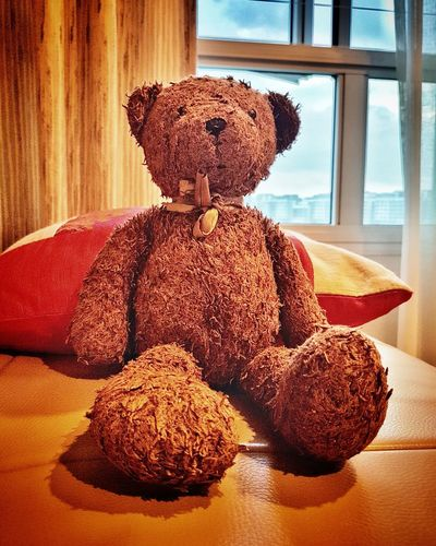 Teddy Bear Sitting Indoors  Photographyeveryday Live Photography Sleep Tight 熊熊 可爱 Love Close-up Little Peace Cozy Beloved Teddy Pet Photography  Loveyou No People Happyday Bonding Togetherness Lifestyles Lifeisbeautiful Happyson