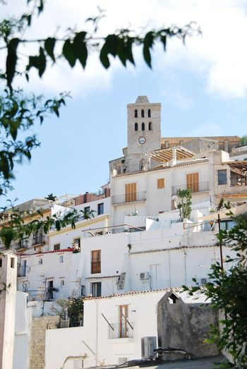 Cathedral Santa Maria de las Nieves Eivissa Ibiza Dalt Vila City Cityscape Tree Clock Tower Residential Building Sky Architecture Building Exterior Cloud - Sky TOWNSCAPE Housing Settlement Rooftop Bell Tower Old Town Human Settlement Townhouse Tiled Roof  Urban Skyline Tall - High Tower Residential Structure