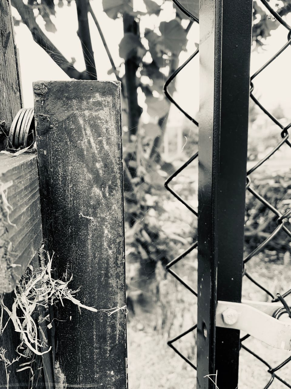 fence, barrier, boundary, no people, focus on foreground, day, metal, close-up, nature, plant, safety, outdoors, pole, security, protection, old, growth, the past, history, post, wooden post, wheel