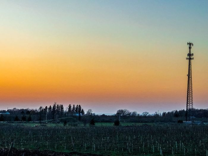 Lifestyle Sunset Sky Orange Color Scenics - Nature Beauty In Nature Landscape Tranquil Scene Nature Tranquility Environment No People Field Plant Land Copy Space Idyllic Growth Outdoors Tree Agriculture