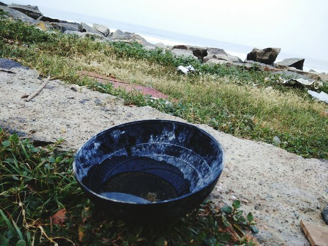 Water Water Life Water Bowls Thirst Sea And Sky