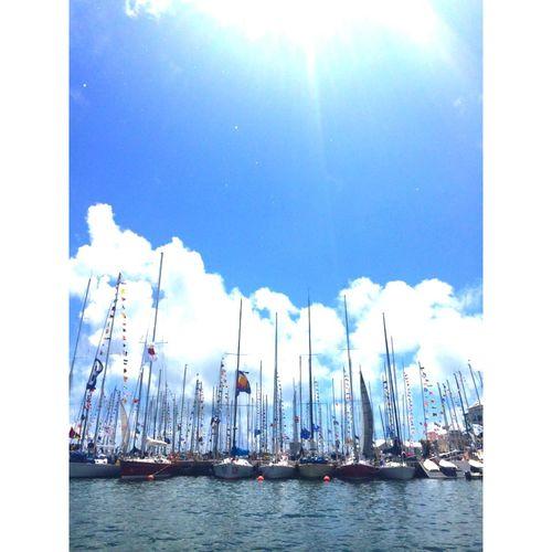 Sailboat Newport Bermuda