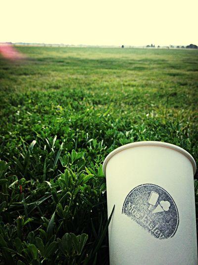 Ice Cream Coffee Park Afternoon