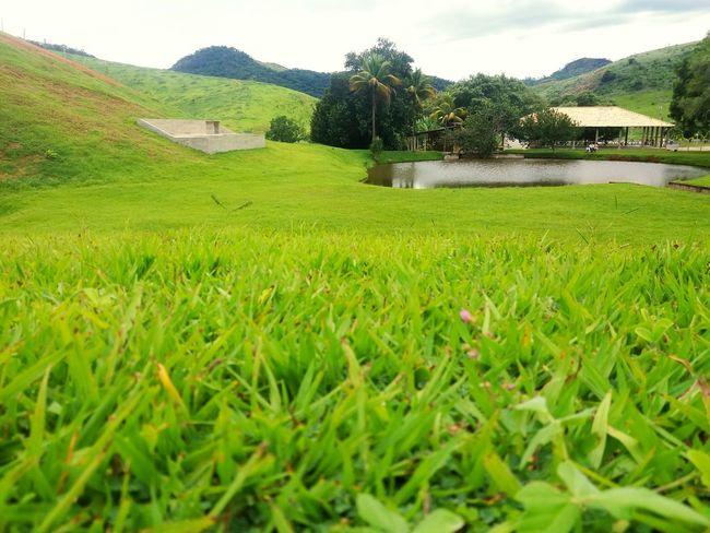 Day Green Color Sky Grass Tranquility Nossasenhora Maria