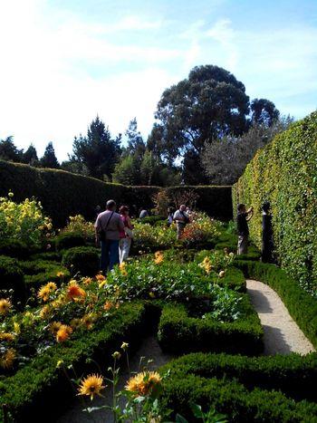 Eyeem Meetup Porto 5 Jardim Botanico