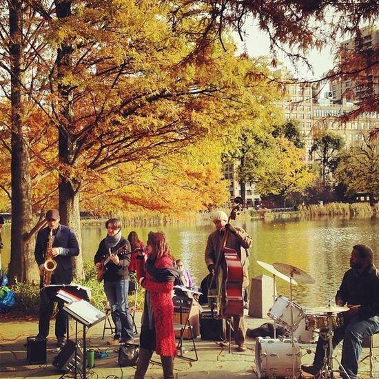 Musicinthepark Park CentralPark Newyorkcity NYC Music Jazz Fallcolors Fall