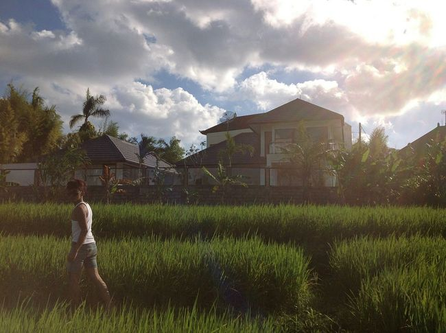 Village Life Visitindonesia Sky_collection Rice Field Taking Photos Gotten Morgen