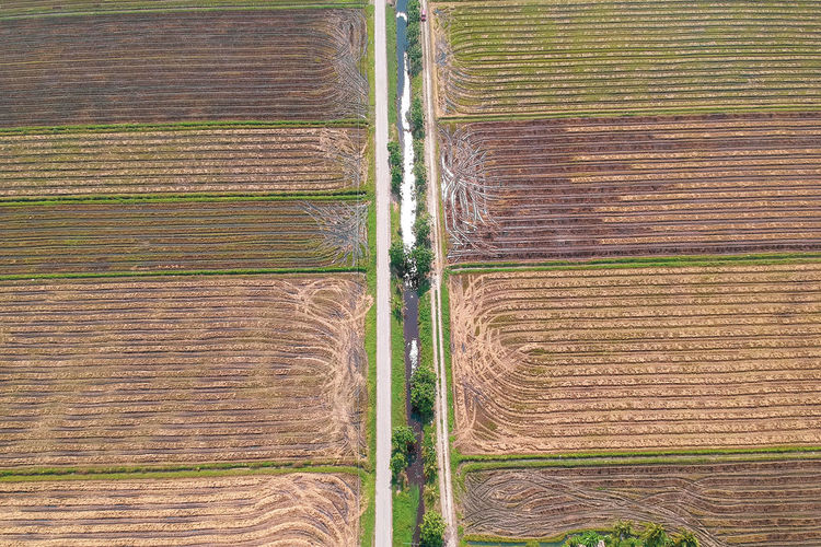 Cereal Plant Plowed Field Rural Scene Wheat Agriculture Full Frame Aerial View Field Plough Irrigation Equipment