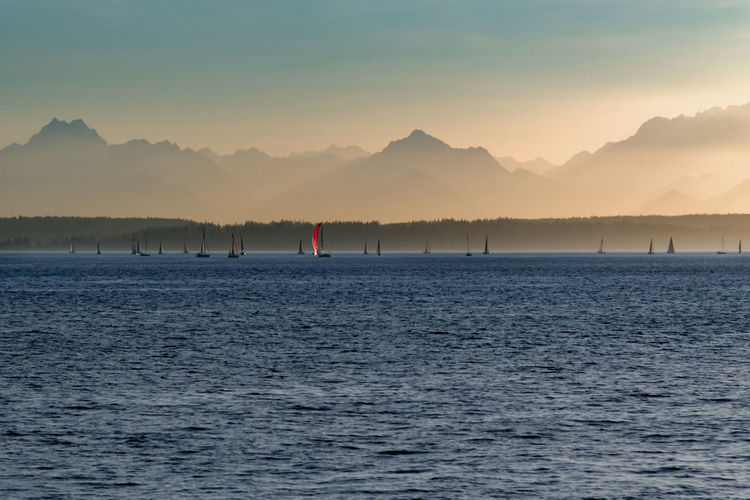 Sailboats sailing in Elliott bay near Seattle with the Olympic mountains in the distance. Beauty In Nature Cruise Day Dusk Elliott Bay Hazy  Jagged Peaks Mountain Nature Olympic Mountains Outdoor Recreation Outdoors Pacific Northwest  Port Of Call Red Sailboats Scenics Seattle Sky Sunset Tranquility Travel Vacation Water Yacht