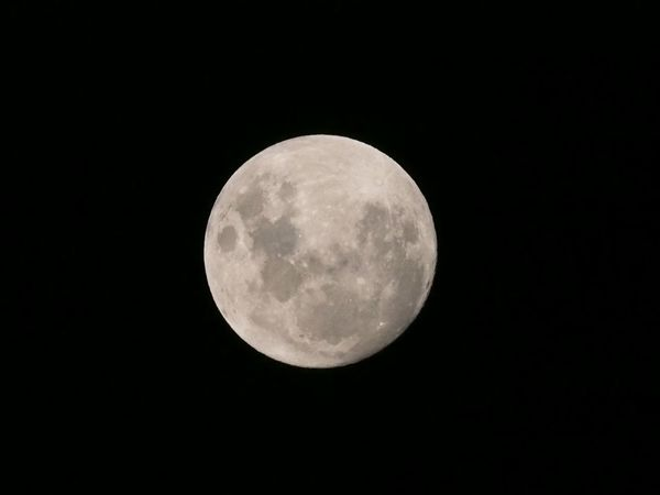 Full moon Full Moon Astrology Astronomy Beauty In Nature Circle Copy Space Dark Full Moon Geometric Shape Idyllic Low Angle View Majestic Moon Moon Surface Moonlight Nature Night No People Outdoors Planetary Moon Scenics - Nature Shape Sky Space Space And Astronomy Tranquility