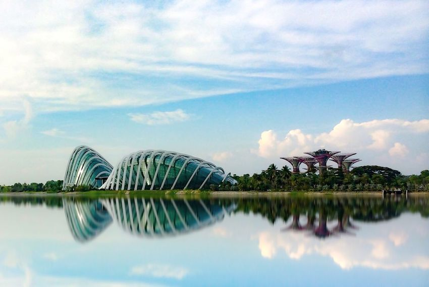 """Garden by the bay"" Reflection Iphonephotography Iphoneonly Iphone5s Water Nature Sky Outdoors Beauty In Nature Tranquil Scene Tranquility No People Scenics Day EyeEm Gallery EyeEmBestPics"