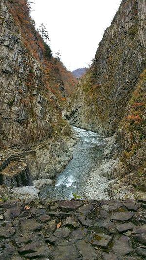 Autumn Yellow Colours Autumn Leaves Japan Niigata Niigata-shi Android River Mountain Snapseed Rain