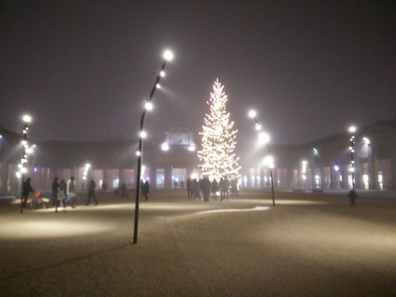 Christmas Around The World Romagna Lugo Di Romagna Albero Di Natale Best Christmas Lights